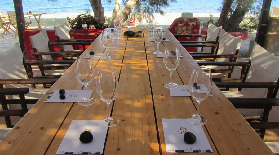 Wine Tasting by the sea