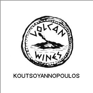 Volcan Wines